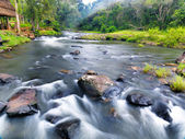 горный ручей тямпасак, южный лаос. — Стоковое фото