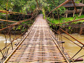 Hanging Bridge in the jungle — Stock Photo