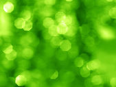Bokeh Spring Background — Stock Photo