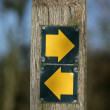 Which Direction — Stockfoto #7162469