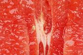 Pink grapefruit abstract — Stock Photo