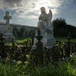 Angel statue at graveyard — Stock Photo
