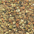 Lake pebbles — Stock Photo