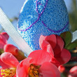 Blue Easter egg and red flowers bloom in spring — Stock Photo