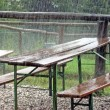 Stock Photo: Picnic tables for feast abandoned during shower