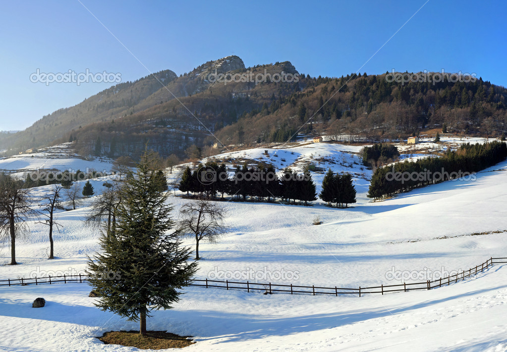 Panorama of the mountains of the Alps in winter with snow and trees — Stock Photo #7129611