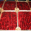 Red cherries next to each other ready to be sold in the grocery market 1 — Stock Photo