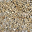 Shed of logs — Stock Photo