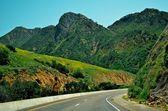 California - Green Road — Stock Photo