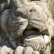 Stone Lions Face — Stock Photo