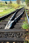 Spoorwegen — Stockfoto