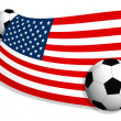 Stock Photo: Soccer balls & flag of USA