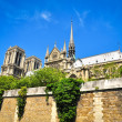 Notre Damme cathedral in Paris - Stock Photo