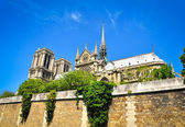 Notre Damme cathedral in Paris — Stock Photo