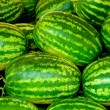 Green vivid watermellons detail — Stockfoto