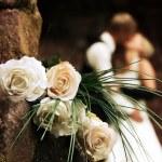Wedding — Stock Photo #7109832