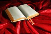 Empty Book — Stock Photo