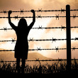 Barbed wire - Stock Photo