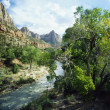 Zion Park — Stock Photo #7159457