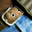 Stock Photo: Belt buckle
