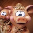Swine — Stock Photo