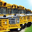 School bus — Foto de Stock