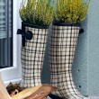 Checked rubber boots - Stock Photo