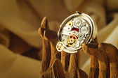 Steampunk ornaments — Stock Photo