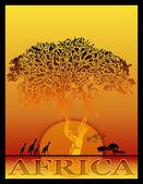 Afryki — Zdjęcie stockowe