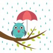 Cute owl with umbrella — Stock Vector #7135298