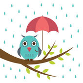 Cute owl with umbrella — Vecteur