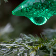 Single green Christmas light and foliage — Stock Photo