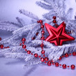 Стоковое фото: Branch of christmas fir tree with decoration