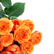 Royalty-Free Stock Photo: Bouquet of orange roses