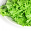 Fresh lettuce on white plate - Stock Photo