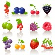 Stock Vector: Berry icons