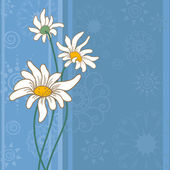 Background with chamomile flowers — Stock Vector