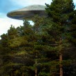Ufo alien over a forest — Stock Photo