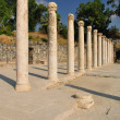 Beit Shean columns. - Stock Photo