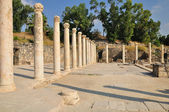 Beit Shean columns. — Stock Photo