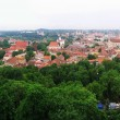 View to old Vilnius from Gediminas castle — Стоковая фотография