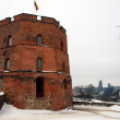Stock Photo: Castle in Vilnius