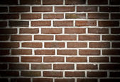 Spotlight on brick wall — Foto de Stock