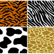 Tiger, zebra, cow and giraffe print — Stock Vector