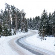 Road in winter — Stock Photo #7168802