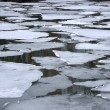 Melting ice floes in water — 图库照片