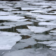 smeltende ice floes in water — Stockfoto