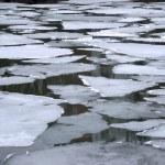 suda eriyen buzlar — Stok fotoğraf