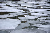 Melting ice floes in water — Stock Photo