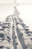 Cross country ski track — Stock Photo